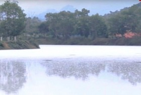 Thanh Hóa factory fined for polluted discharge