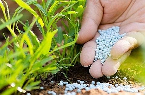 moit imposes safeguard measures on imported fertilisers