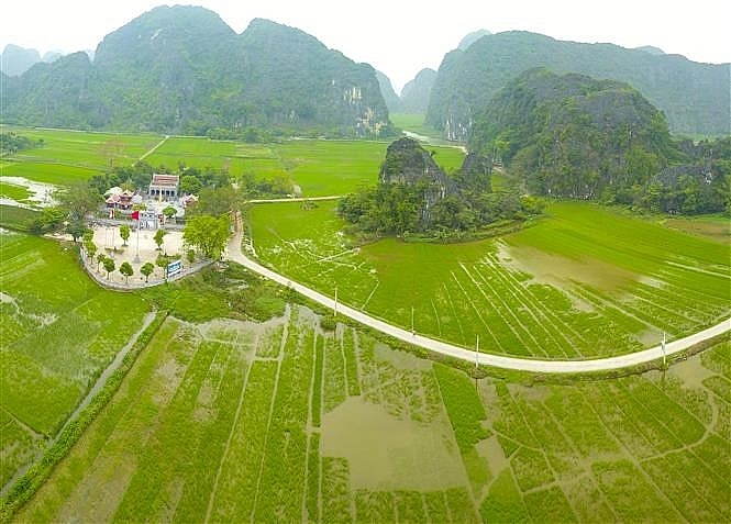tam coc bich dong blanketed with green rice fields