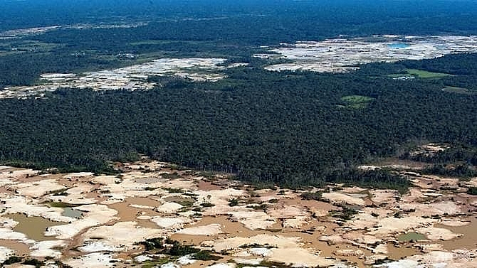 close to tipping point amazon rainforest could collapse in 50 years