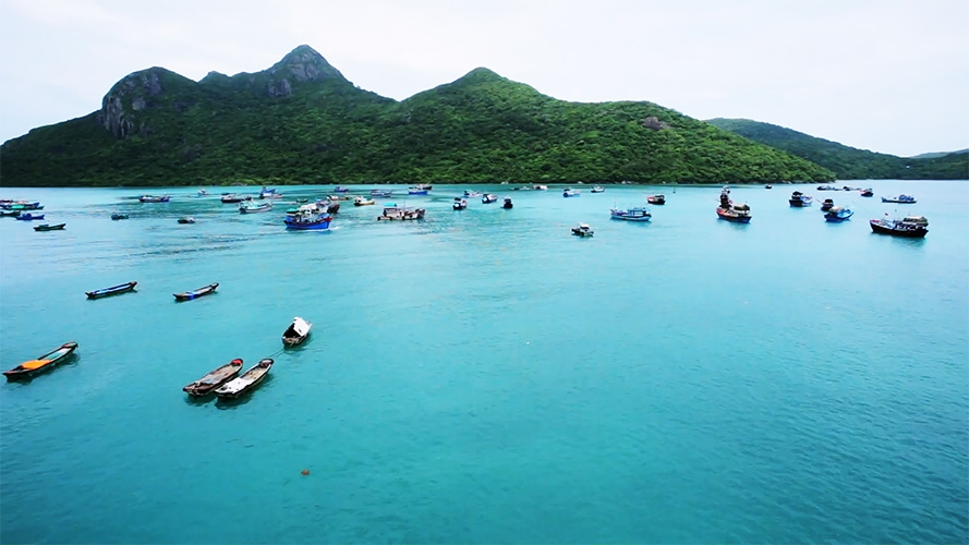 con dao island to be temporarily closed to prevent covid 19