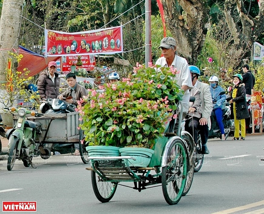 cyclo tour around hue city