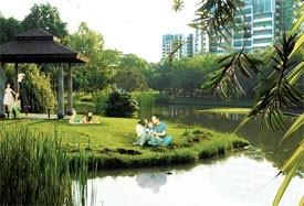 celadon a city within a park