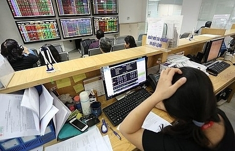 vn index hits new high on pmi result