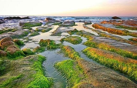colourful stones enchant at binh thuan beach
