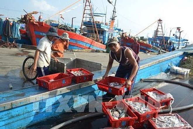 ben tre works hard to curb illegal fishing