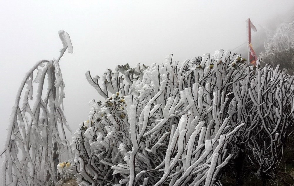 mount fansifan covered with ice as cold spell strikes vietnams northern region