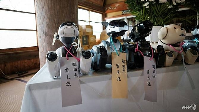 fido funeral in japan a send off for robot dogs