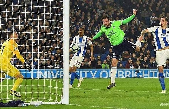 cardiff sink relegation rivals brighton to boost survival bid