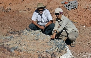scientists unearth 220 million year old dinosaur fossils in argentina