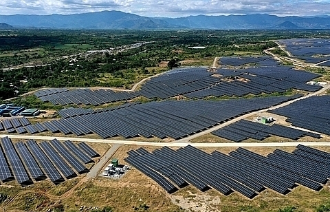 ninh thuan vows to facilitate renewable energy projects