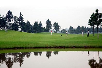 teed off golfers