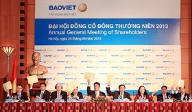 baoviet holdings touts 15 per cent dividend for 2012
