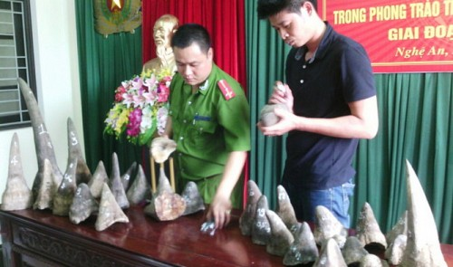vietnam police further probe rhino horn trading ring after 1mn seizure
