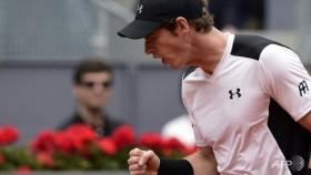 Djokovic, Murray cruise into Madrid quarters