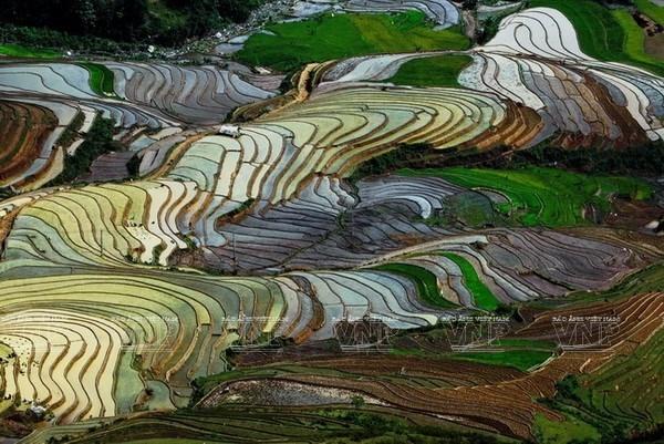 paragliding festival to take place in yen bai
