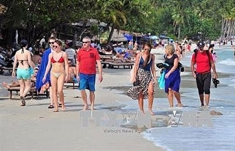 beach tours popular this summer travel firms