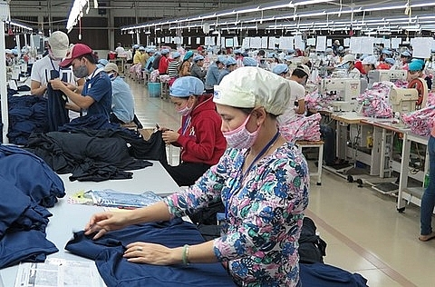 cptpps a must to help vietnam businesses grow
