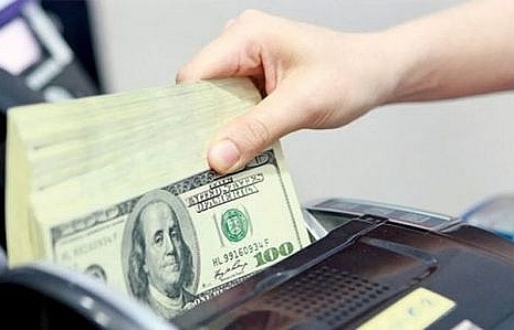 central bank buys 835 billion to build foreign reserves