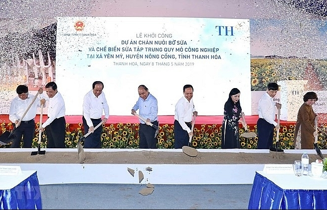 work begins on th dairy farm project in thanh hoa province
