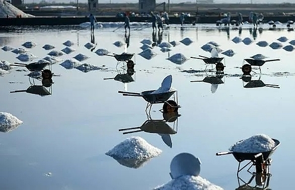 mineral misery vietnam salt farmers battered by imports climate