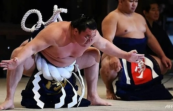 covid 19 forces cancellation of japan sumo tournament
