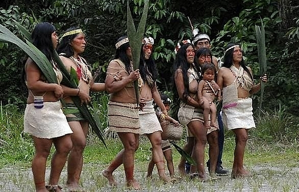 first coronavirus case detected in ecuador amazon tribe