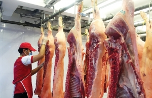 price of pork rides high as supply refuses to rise