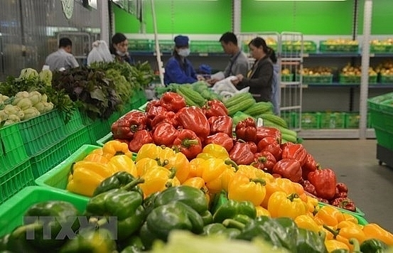 us becomes vietnams largest supplier of fruits vegetables