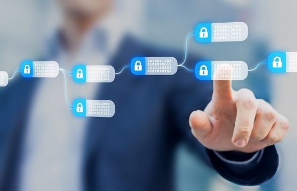 initiative protecting digital sme assets