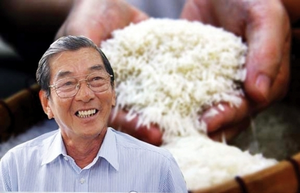 from humble start to worlds best rice