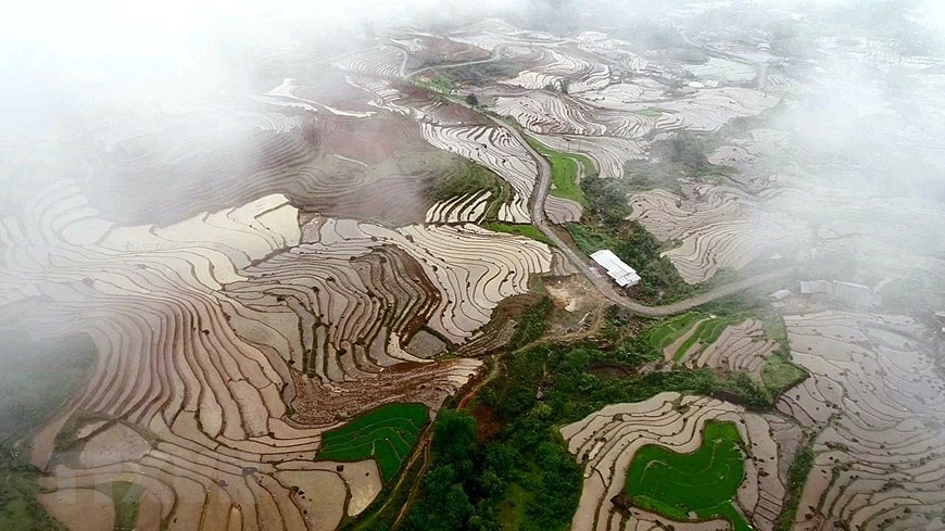 y ty rice terraces in pouring water season photos