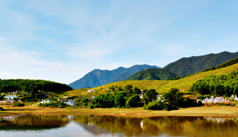 eight forests suitable for nature enthusiasts in vietnam hinh 3
