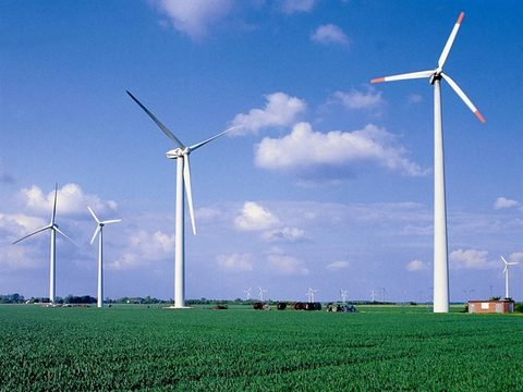 Bac Lieu: Foreign investors eye wind power projects