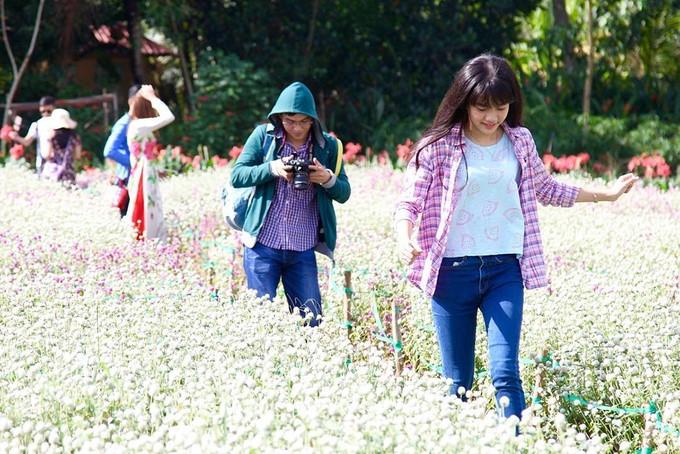 visitors buzz around tien giang flower garden