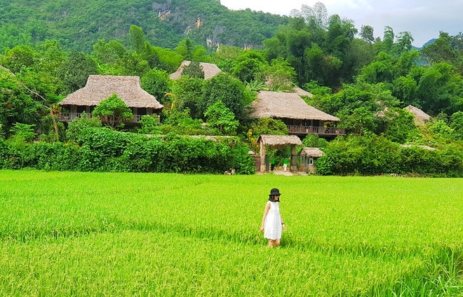 immerse in culture of thai ethnic minority at mai chau ecolodge