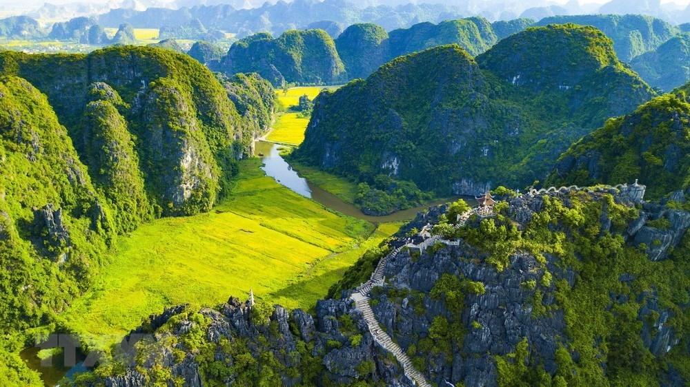 golden ripe paddy fields looking from hang mua peak