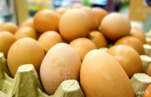 more than four million eggs recalled in poland