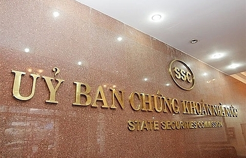 non voting shares could lure more foreign capital to vietnamese firms