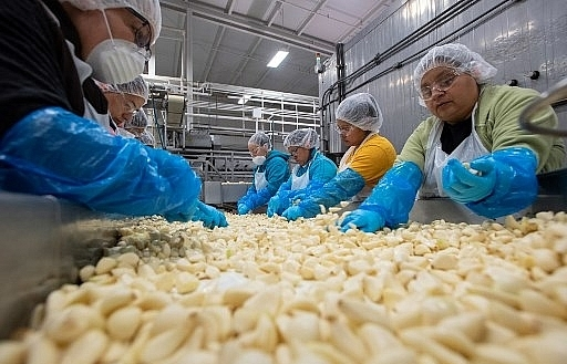 economies look to spread trade risks