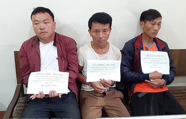 son la three arrested for drug smuggling