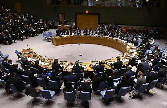 estonia vietnam among five elected to un security council