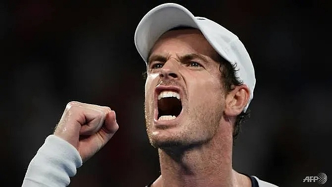 andy murray aims for singles return this year
