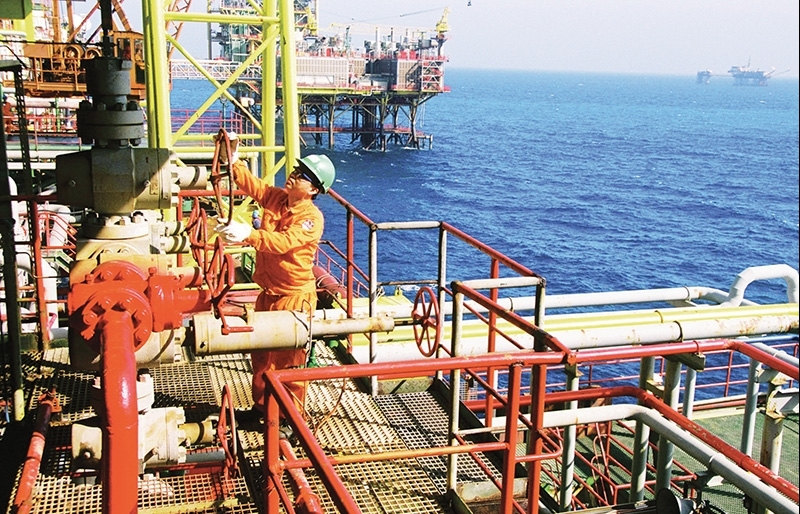 petrovietnam bucking trends with positive business results