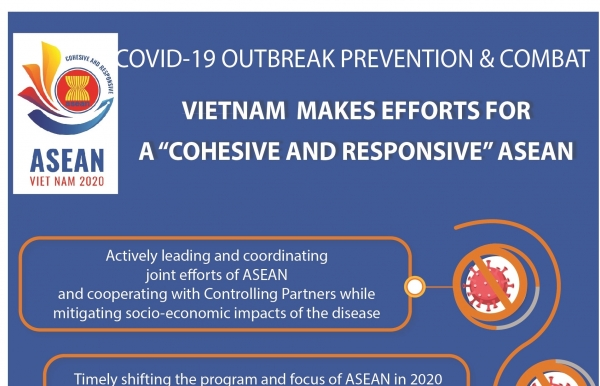 vietnam makes efforts for cohesive and responsive asean infographics