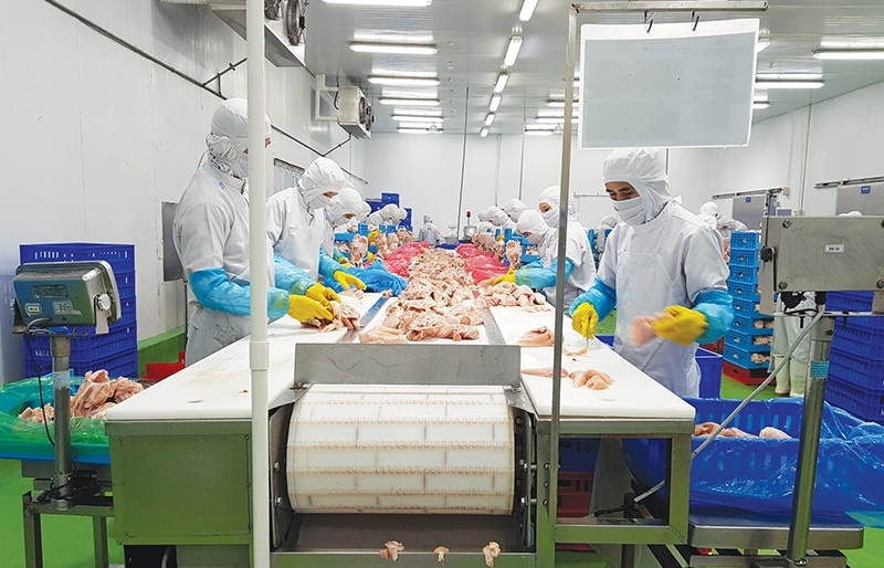 meat and dairy exporters up capacity to challenge rivals