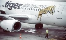 australia grounds tiger airways over safety fears