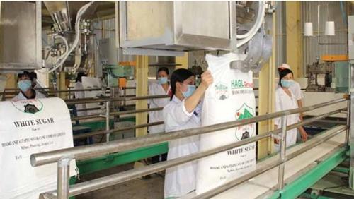 hagl imports more than 1300 tonnes of sugar