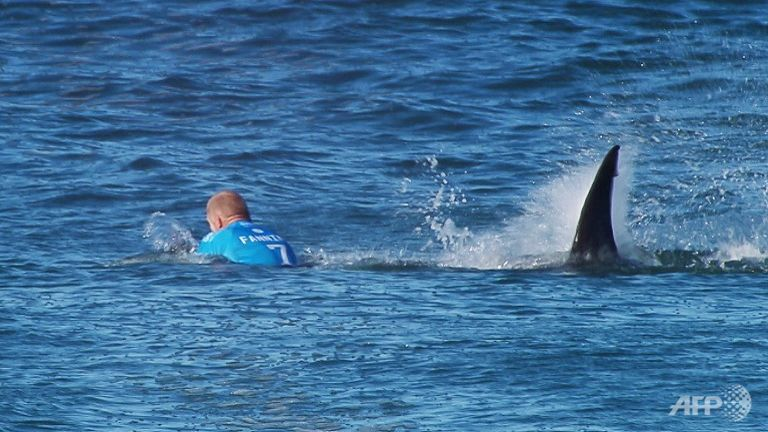 Australian Surfer Stoked After Surviving Shark Attack Sports
