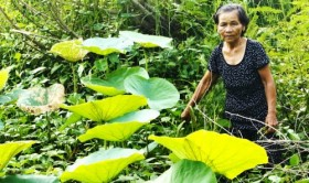 The inseparable ties of villagers along Vietnam-Cambodia border